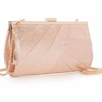 Coast- Pink Charis Bag